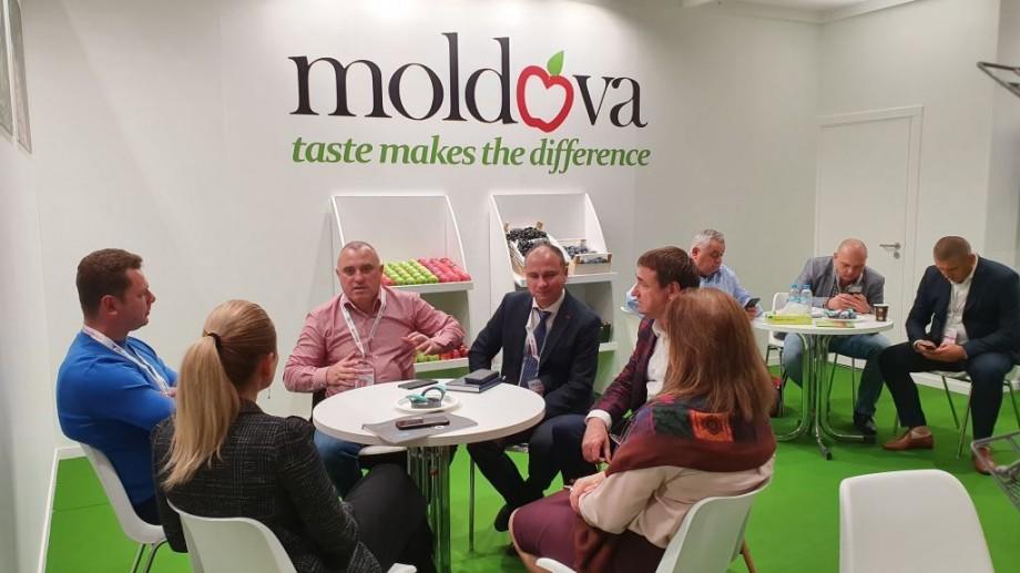 (foto) Merele din Moldova au fost înalt apreciate la o expoziție internațională din Spania