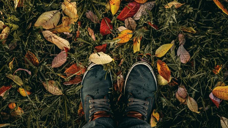 Recomandări #diez. Evenimente la care poți merge joi, 14 noiembrie
