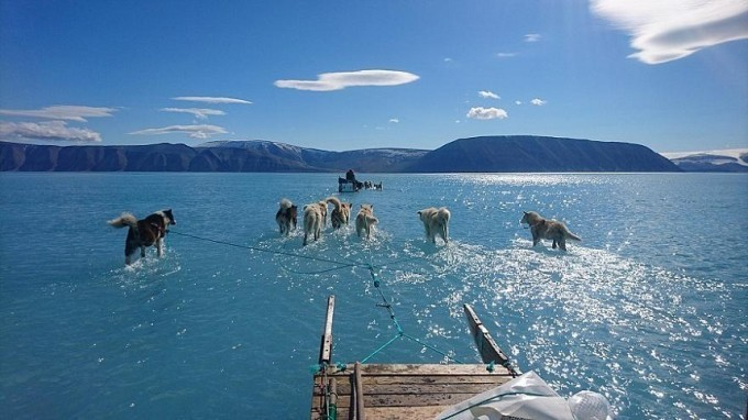 Dacă Groenlanda continuă să piardă gheaţă în ritmul actual, peste 400 de milioane de oameni vor fi expuse la inundații până în 2100