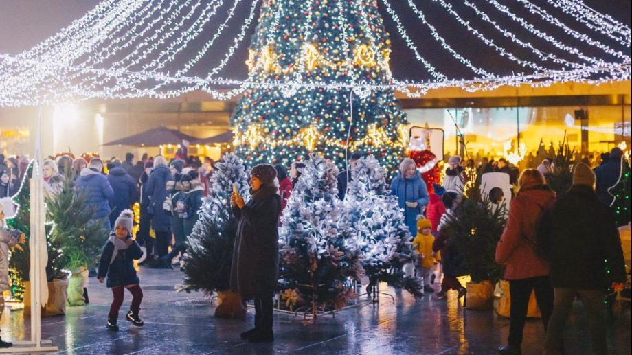 (foto) 10 motive să petreci Ajunul Crăciunului la Castel Mimi