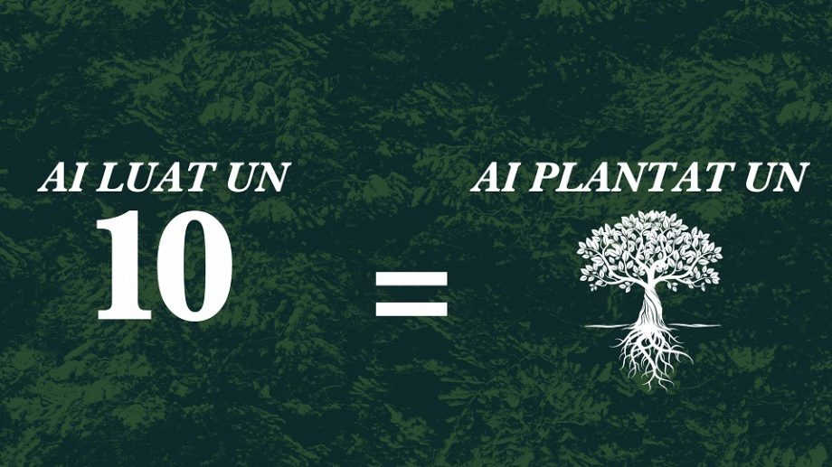 Ai luat un 10 în sesiune? În numele tău va fi plantat un copac! Inițiativa aparține unei facultăți de la Cluj
