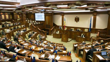 (foto) Bradul din PMAN va fi adus din Ucraina și va avea 29 de metri. Iată cum arată și cât costă pomul