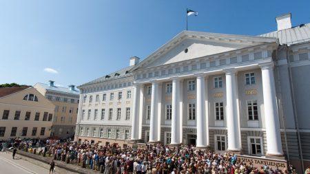 """Agenţia """"Moldsilva"""" scoate în vânzare peste 50 de mii de brazi. Care este prețul unui pom de Crăciun"""