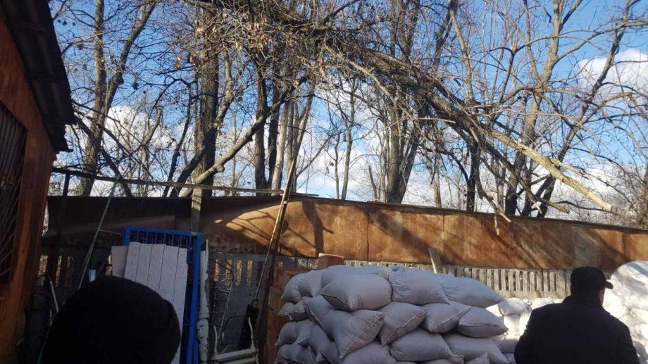 Un bărbat a avut de suferit din cauza prăbuşirii unei ramuri de copac din cauza vântului