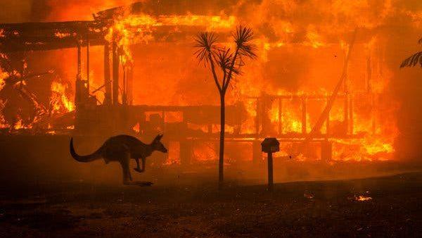 Ordin de evacuare în masă, din cauza incendiilor, în Australia. Nave şi elicoptere militare, trimise să salveze oamenii din foc