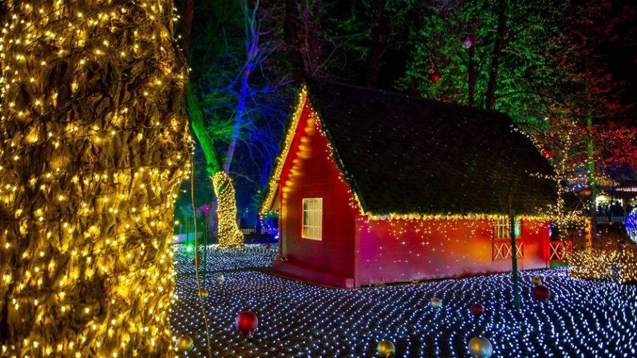 Cei care au rămas astăzi la Chișinău pot merge la Târgul de Crăciun. Ce spectacole se organizează
