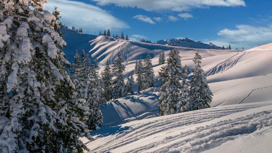 Cinci destinații din România unde îți poți petrece concediul de iarnă