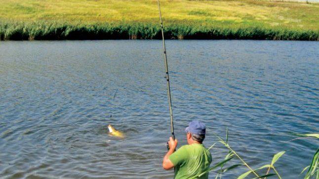 Pescuitul în raioanele Glodeni, Fălești și Ungheni este restricționat. Care este motivul