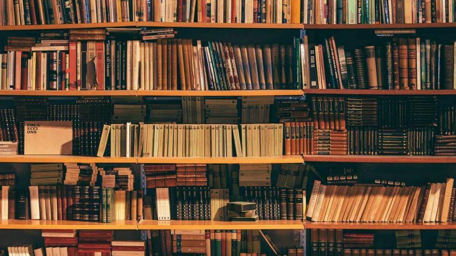 """Lista autorilor nominalizați la premiile """"B.P. Hasdeu"""" pentru debut în literatură în anul 2019"""