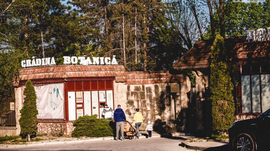 (doc) Fără biciclete și animale de companie. Ce reguli trebuie să respecte vizitatorii Grădinii Botanice