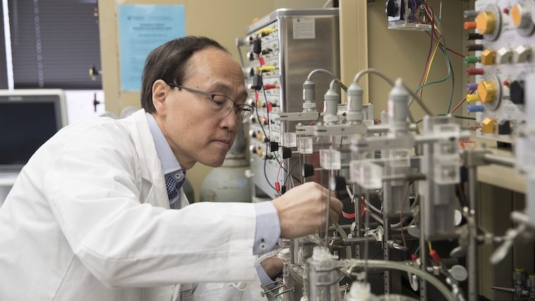 Un cercetător chinez a descoperit antioxidantul care combate coronavirusul