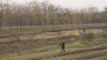 Chișinău: Ploaia din 31 mai a adus un prejudiciu de aproape 3 milioane de lei