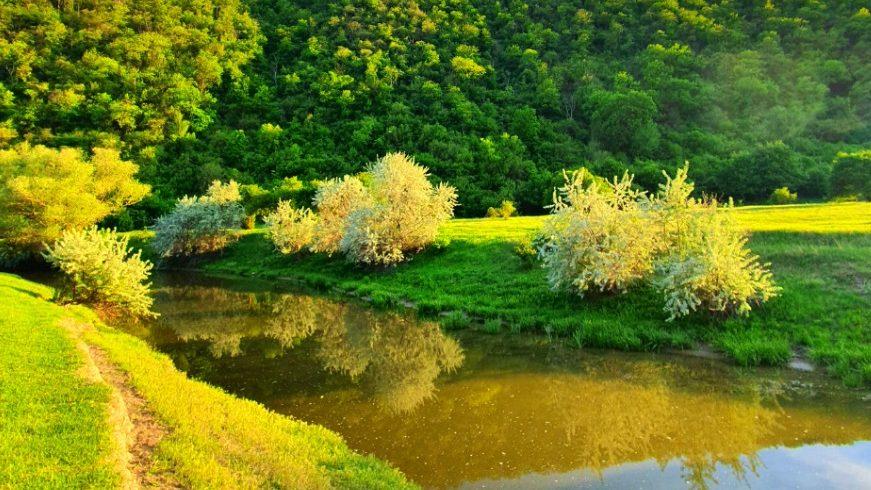 (foto) Petrece weekendul activ descoperind localitățile pitorești din Moldova. Ghid elaborat împreună cu Art-Labyrinth