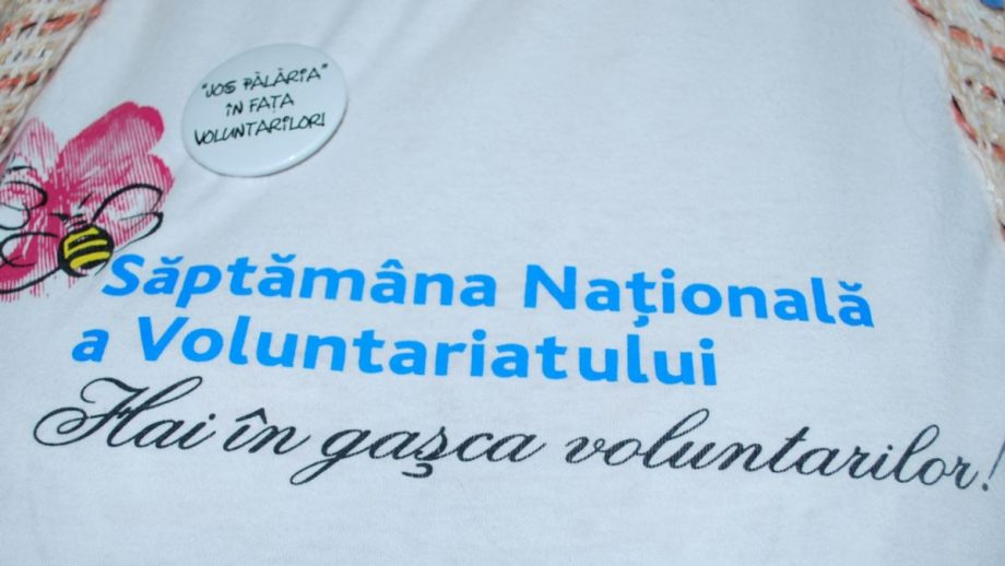 Ministerul Educației este în căutare de organizații care să implementeze trei proiecte de voluntariat
