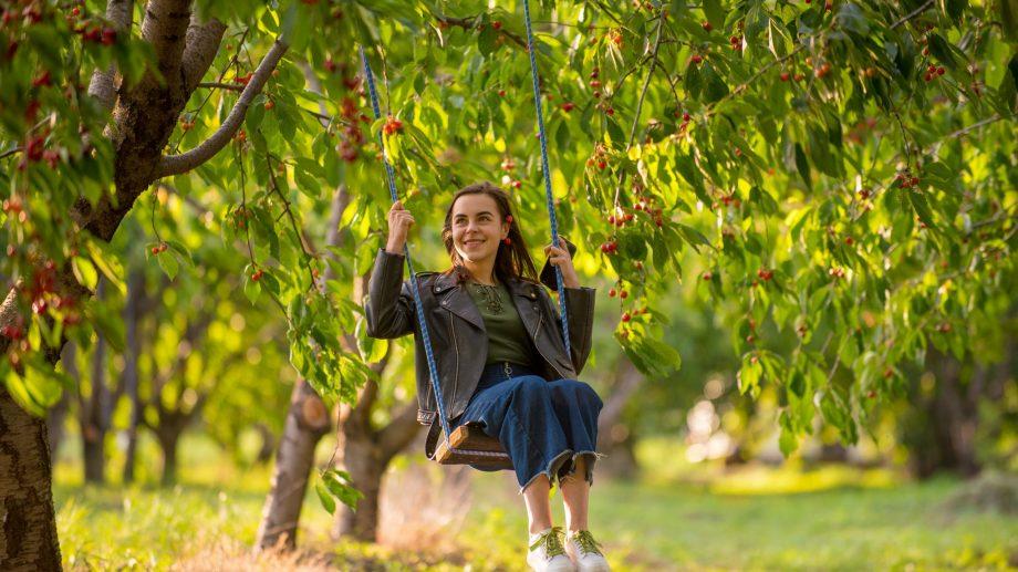 """""""Te urci în pom și mănânci cât vrei."""" #diez a fost la livada din satul Ișnovăț, unde singur îți poți face plinul de cireșe"""