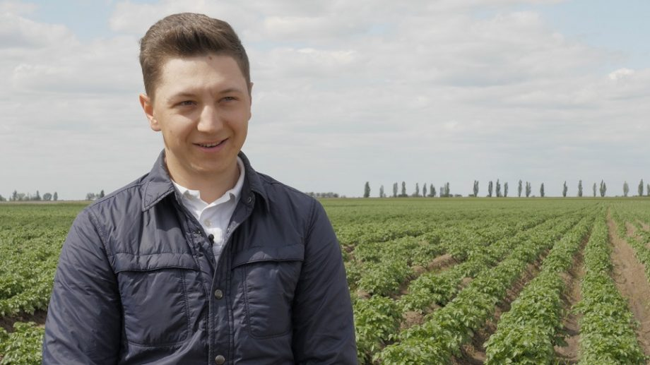 """(video) """"Căpșuni de acasă"""". Ce soluții au găsit producătorii locali pentru a-și vinde fructele pe timp de pandemie"""