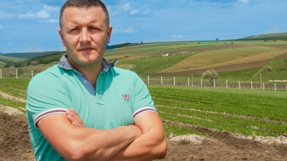 (video) Verdețuri crescute în Moldova. Povestea unui producător din Mereni care vinde sănătate la pachet