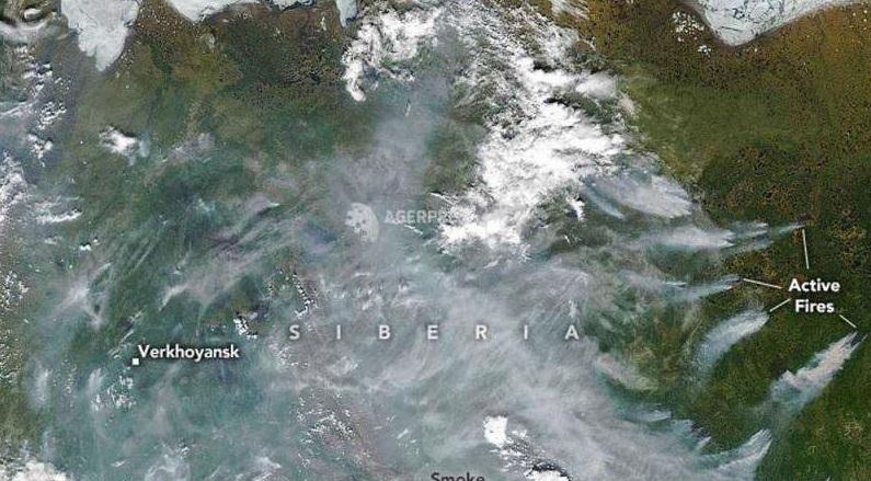 Recorduri de temperatură în Arctica. Câte grade au fost înregistrate pe teritoriul arctic al Rusiei