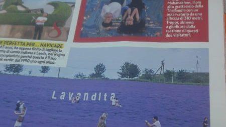 (foto) Lanurile de lavandă din Moldova, populare și peste hotare. Lavandița a ajuns pe paginile unui săptămânal italian