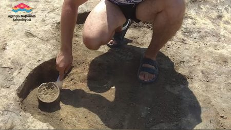"""(video) Experiment medical. Regula celor """"cinci secunde"""" nu funcționează atunci când scapi mâncarea pe jos"""
