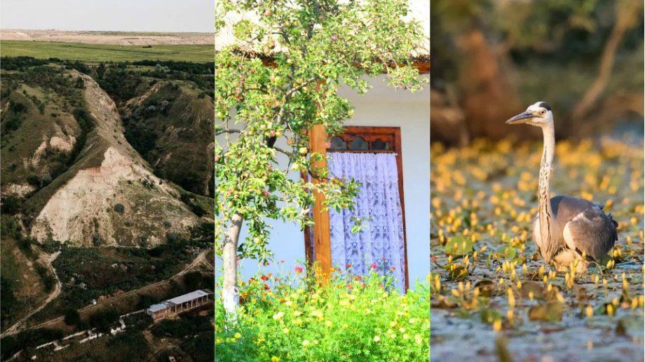 (foto) Pensiunile din Moldova. De ce merită să vizitezi complexul turistic Eco-Village Văleni, ce poți vedea în regiune și cât te costă o noapte la Cahul