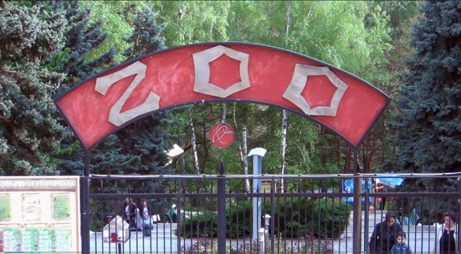 """ANI a sesizat procuratura în privința directorului """"Grădinii Zoologice"""". Acesta este învinuit că a denaturat declarația de avere"""