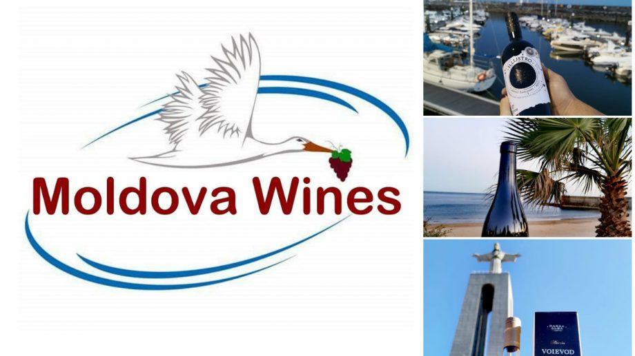 A fost lansată aplicația Moldova Wines – magazin online de vinuri moldovenești, care oferă livrări la domiciliu în orice colț din UE, Australia și SUA