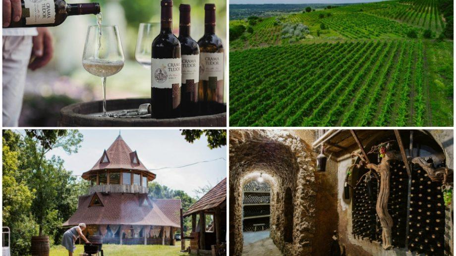 """(foto) Peisaje panoramice, vinuri aromate și bucate tradiționale. Descoperă vinăria """"Crama Tudor"""" din raionul Călărași"""